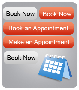 Add Appointment Booking Button to your website